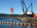 C1 – Similk Bay Piling Removal